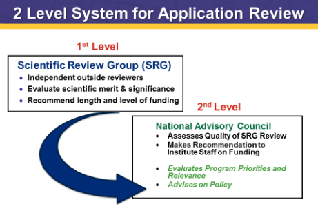 2 Level System for Application Review: 1st Level: Scientific Review Group (SRG)  Independent outside reviewers,  Evaluate scientific merit & significance,  Recommend length and level of funding; 2nd Level: National Advisory Council Assesses Quality of SRG Review Makes Recommendation to Institute Staff on Funding  Evaluates Program Priorities and Relevance Advises on Policy
