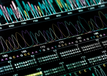 genetics graph