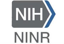 Image result for ninr logo