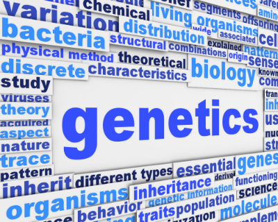 wordcloudgenetics
